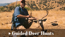 Guided Deer Hunting